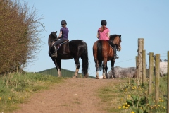 KATIE & AMY-LEE ON BLUE & ADDY