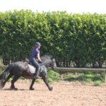 Pony outdoor arena