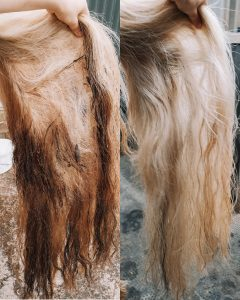 Before and after Marley tail