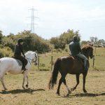 Horses ridden across field