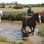 Horses riding through water